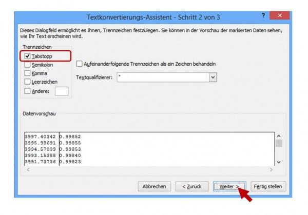 Textkonvertierungs-Assistent Schritt 2 von 3