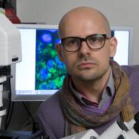 Dr. Milos Filipovic (Foto: Erich Malter, FAU)