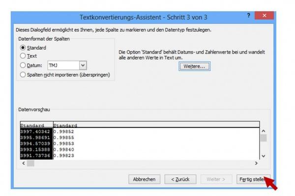 Textkonvertierungs-Assistent Schritt 3 von 3