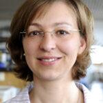 Prof. Dr. Svetlana Tsogoeva (Foto: Gerd Grimm, FAU)